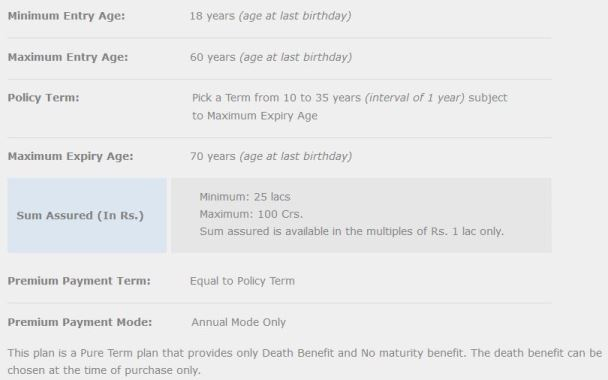 Max Life Online Term Plan Features